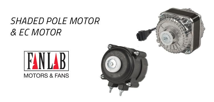 motori a poli schermati shaded pole motor